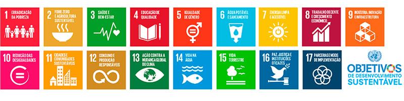 todos os objetivos de desenvolvimento sustentável